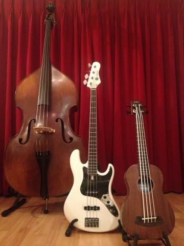 play bass, bass